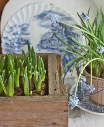 dekor/pashalnaya-floristika-foto-v-stile-provans-20.jpg