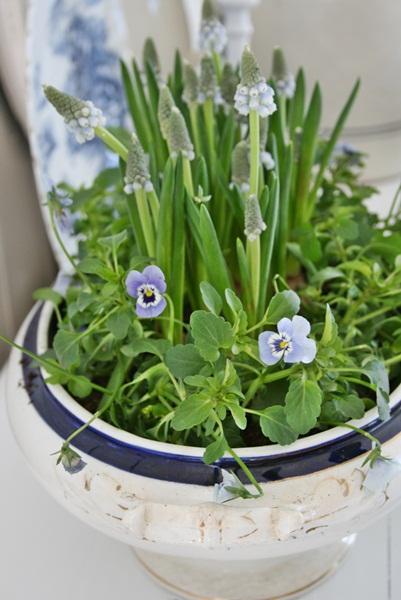 dekor/pashalnaya-floristika-foto-v-stile-provans-6.jpg