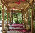 Романтический сад в стиле Прованс - 36 фото ландшафтного дизайна в манере французского кантри | Дизайн в стиле Прованс - французский стиль кантри в вашем доме