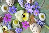 Весенние цветы к пасхе - 30 фото в стиле Прованс | Дизайн в стиле Прованс - французский стиль кантри в вашем доме