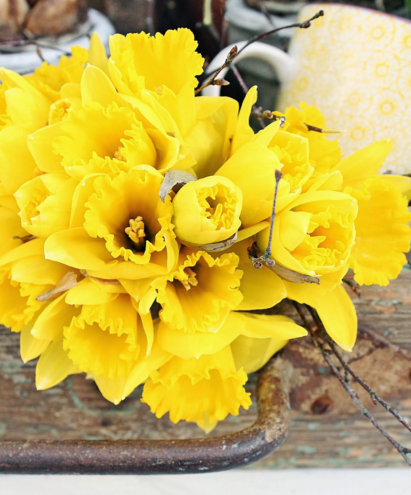 dekor/vesennie-cvety-k-pashe-foto-16.jpg