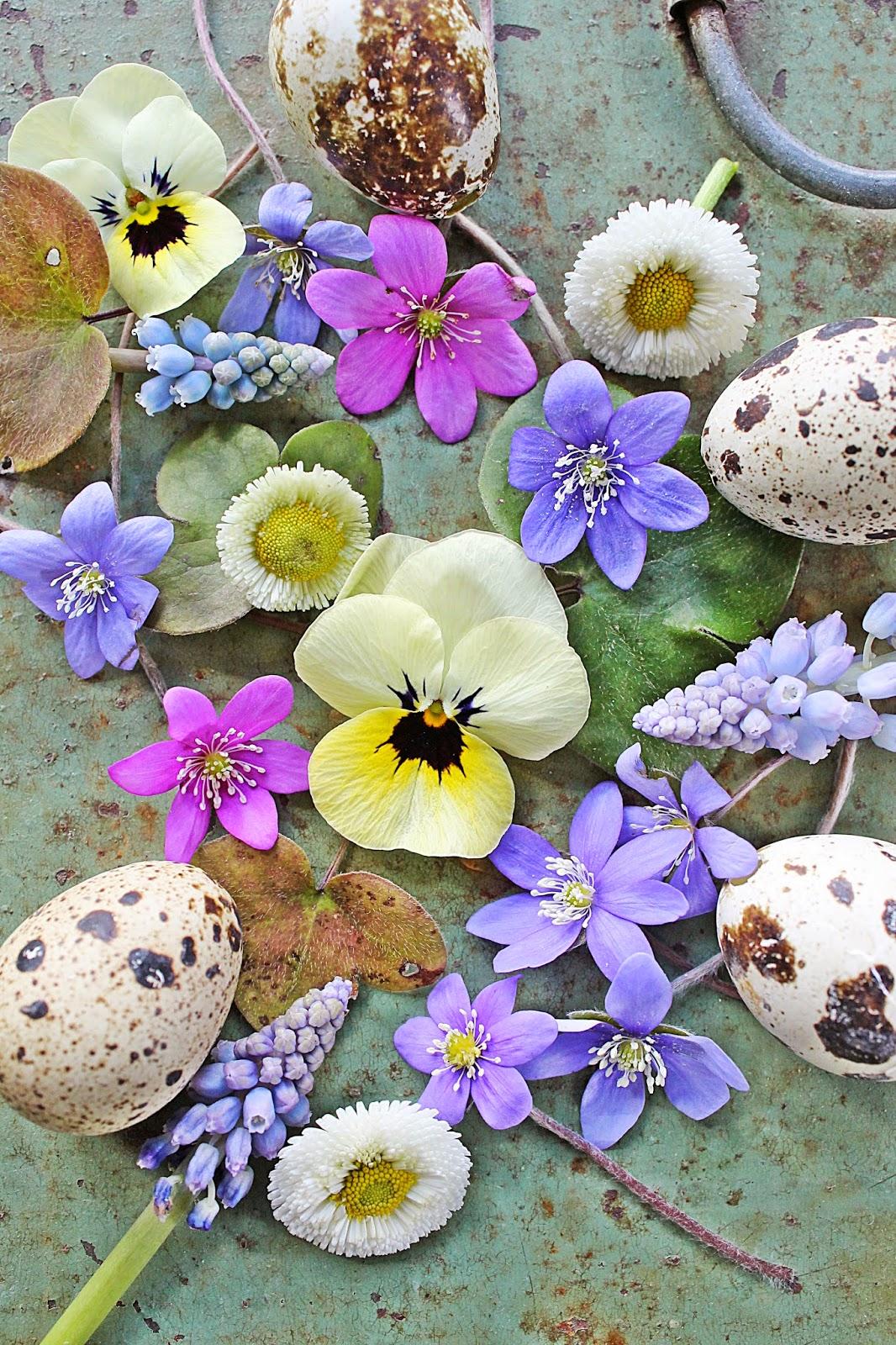 dekor/vesennie-cvety-k-pashe-foto-19.jpg