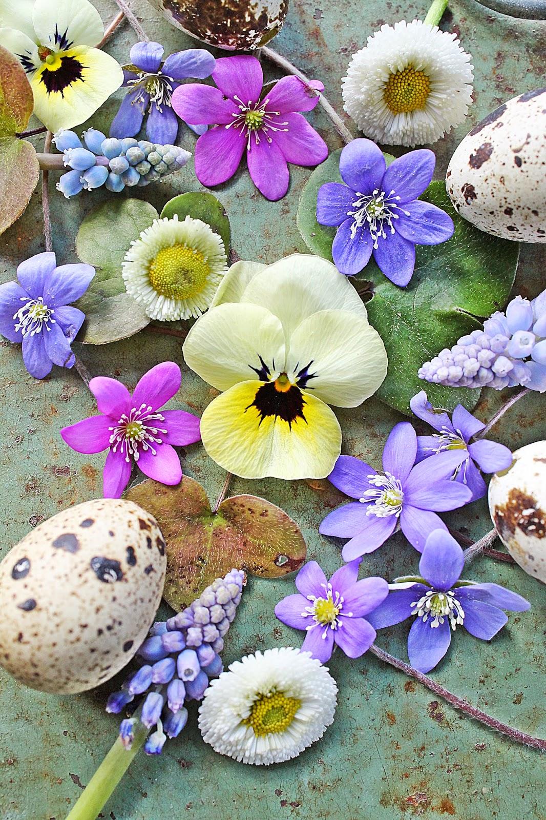 dekor/vesennie-cvety-k-pashe-foto-24.jpg