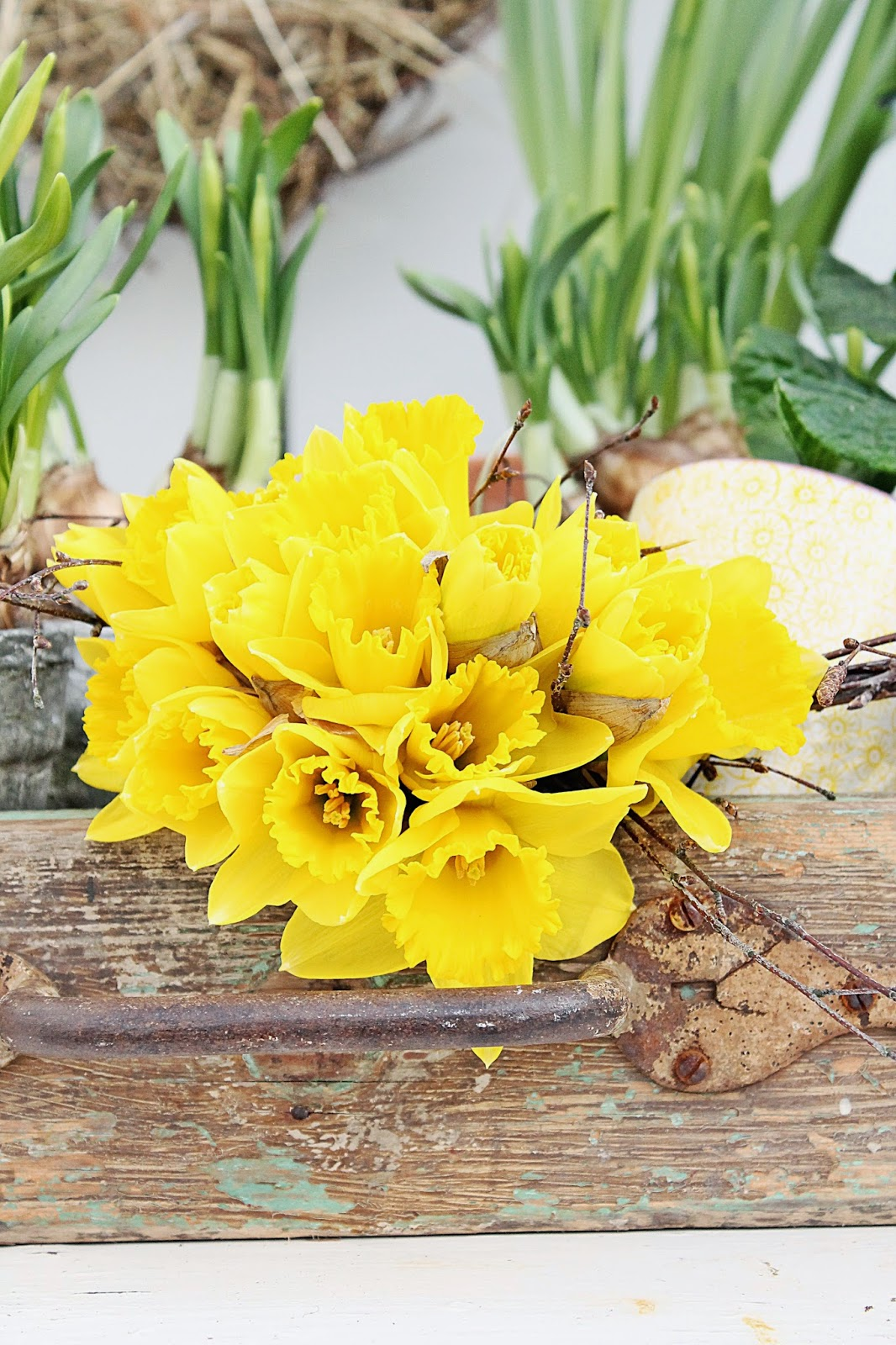 dekor/vesennie-cvety-k-pashe-foto-28.jpg