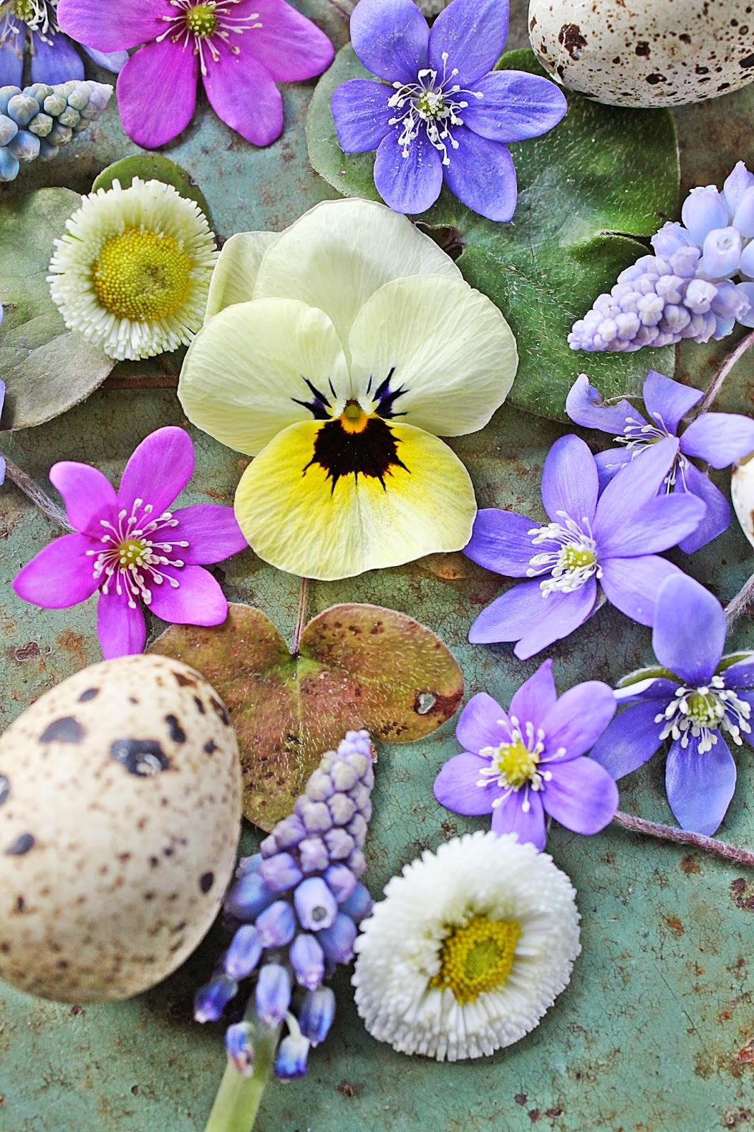 dekor/vesennie-cvety-k-pashe-foto-29.jpg