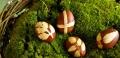 Оригинальная покраска пасхальных яиц: мастер-класс | Дизайн в стиле Прованс - французский стиль кантри в вашем доме